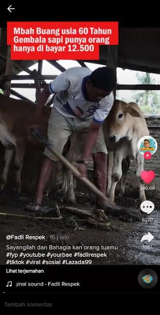 Hidup di Gubuk Reyot Tanpa Kasur dengan Bantal Karung, Ini Kisah Pilu Kakek Gembala Sapi yang Diupah Kecil