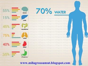 kebutuhan jumlah air pada tubuh