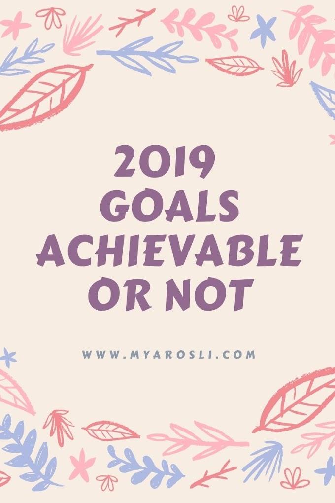 2019 Goals Achievable or Not