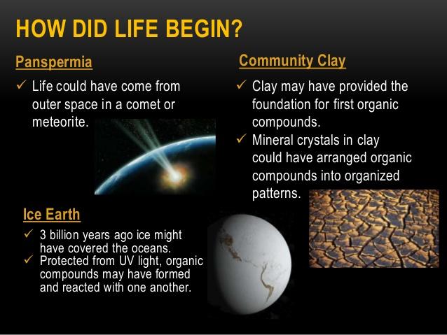 panspermia, earth, life
