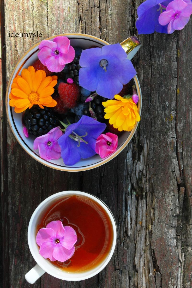 sałatka z malinami, letnia sałatka, jadalne kwiaty, jadalne kwiaty nagietka, przepis z kwiatami, dzwonek brzoskwiniolistny, herbatka z kwiatów, jadalne rośliny ogrodowe, edible flowers, calendula flower recipe, edible bellflower