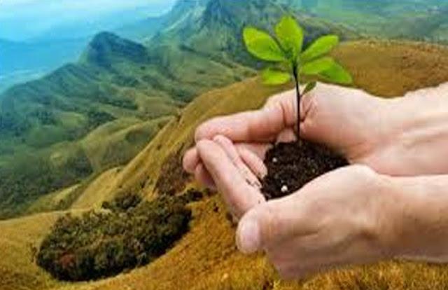 शिक्षा सत्र के शुरू होते ही हुआ पौधा रोपण  - newsonfloor.com