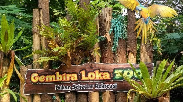 Senin Besok Kebun Binatang Gembira Loka Yogyakarta Buka