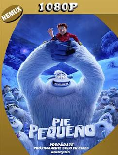Pie Pequeño (2018)HD [1080p REMUX] Latino [GoogleDrive] SilvestreHD