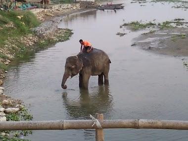 Een reis door Noord India