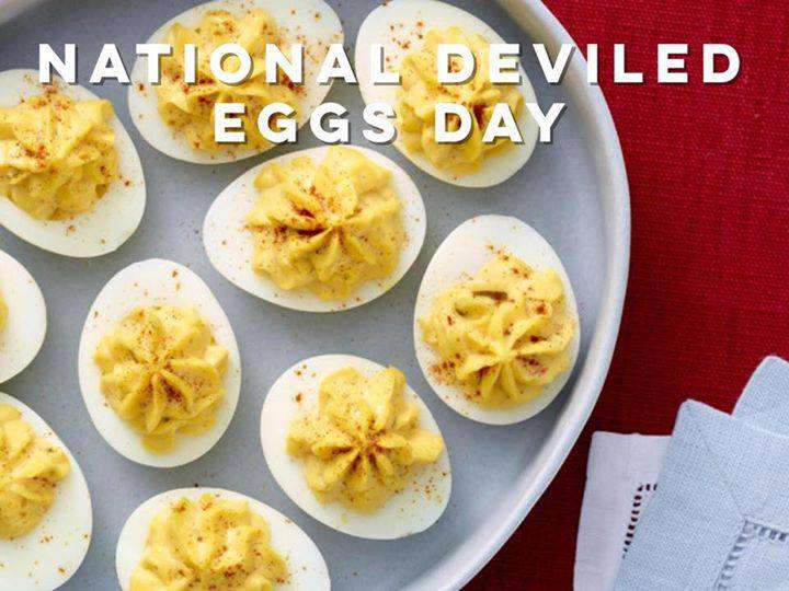 National Deviled Egg Day Wishes Images download