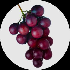 Ramuan Dalam Res V-Anggur Muscadine