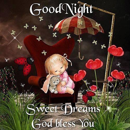 #goodnight  #gn  #goodnightsweetdreams  #gnsdtc  #sweetnight