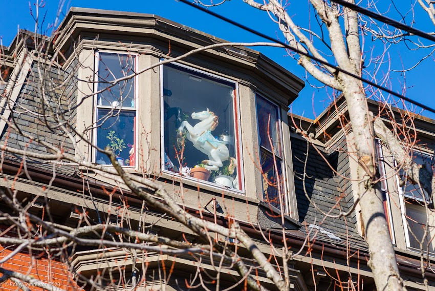 March 2020 Photo Corey Templeton. Pony Up: A fun window decoration on Pine Street in the West End.
