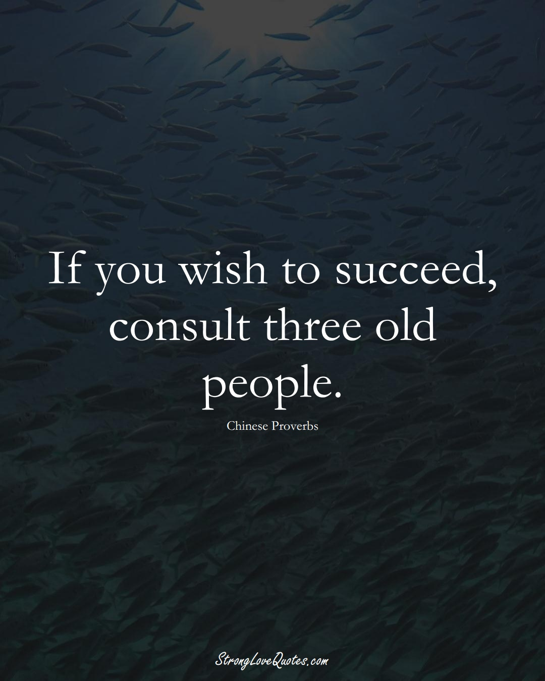 If you wish to succeed, consult three old people. (Chinese Sayings);  #AsianSayings