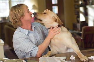 Marley y yo - concurso SEO el perro arcoiris sonrie en CICE