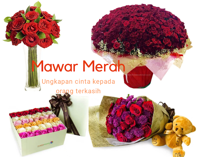 Flower Advisor toko bunga terbaik