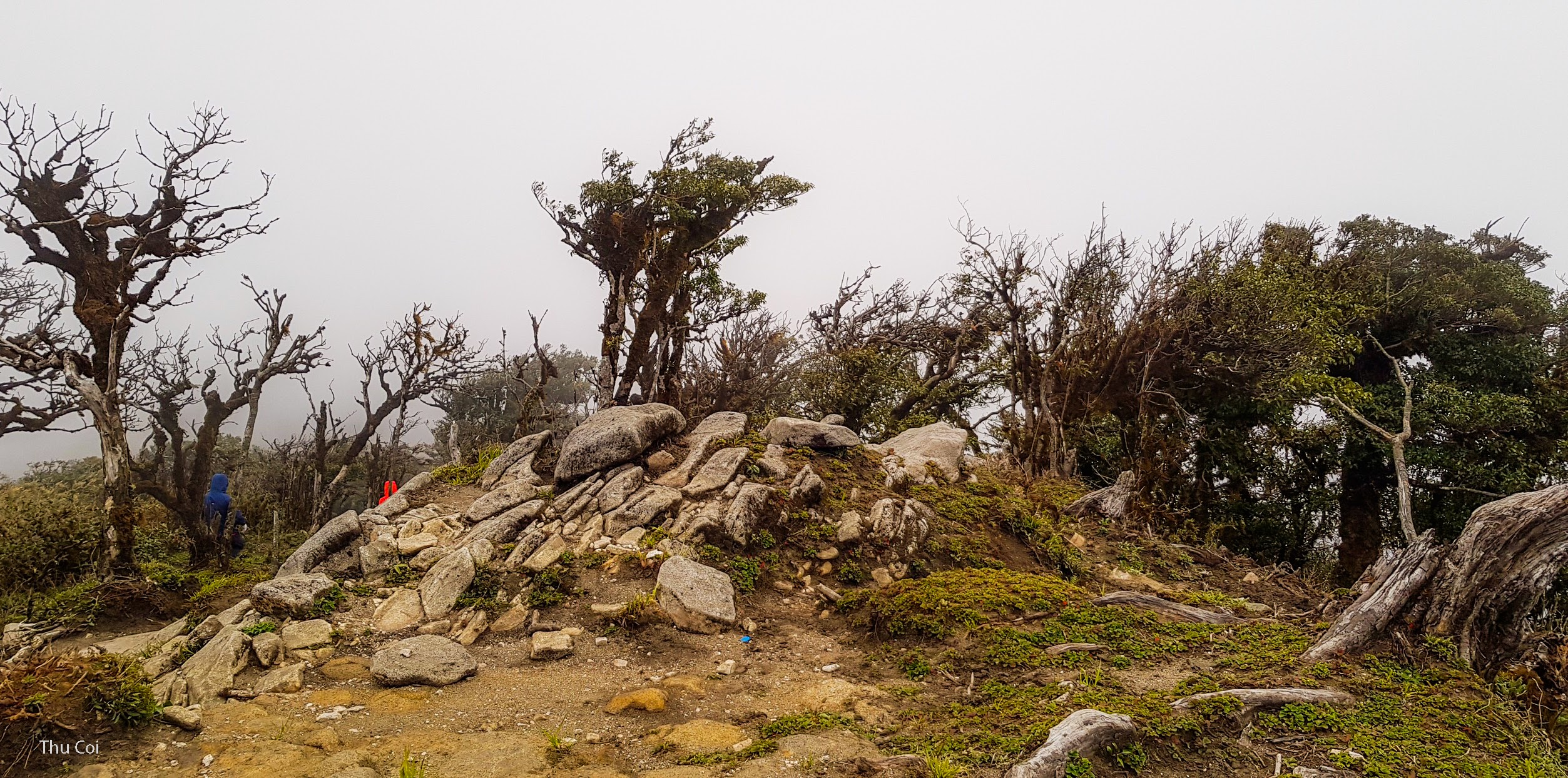 Trekking Tour Kỳ Quan San 3046 m (Bạch Mộc Lương Tử)