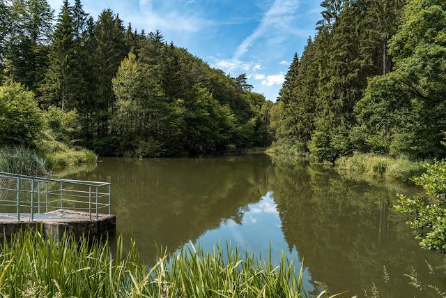 Talsperrenweg Siegburg | Wahnbachtalsperre | Erlebnisweg Sieg | Naturregion Sieg 15