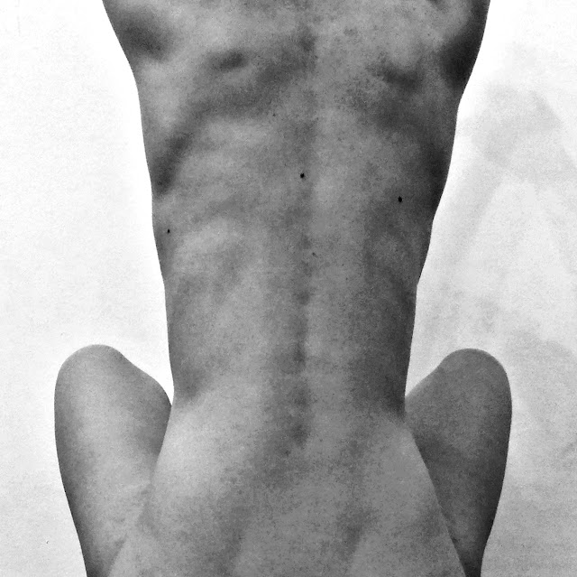 spine, back, naked, body, muscles