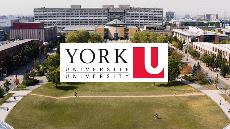 York University Undergraduate Scholarship 2021/2022