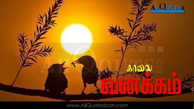 Cool Quotations in Tamil,Best Love Quotations in English,Friendship Quotations in English, Inspiring Quotations in English,Best Love Quotations in Tamil,Friendship Quotations in Tamil, Inspiring Quotations in Tamil,Best Love Quotations in Tamil, Friendship Quotations in Tamil, Beatiful Thoughts and Sayings in Tamil , Best Feeling Quotations in Tamil, Great People and Great Sayings in Tamil, Swami Vivekananda Quotations ,Freedom Fighters Best Quotes in Tamil, and Insipiring Quotes in Tamil Best Feeling Quotes in English, Best Love Quotations in Hindi,Friendship Quotations in Hindi, Inspiring Quotations  in Hindi and Punch Dialogues in Movies and More Available Here.