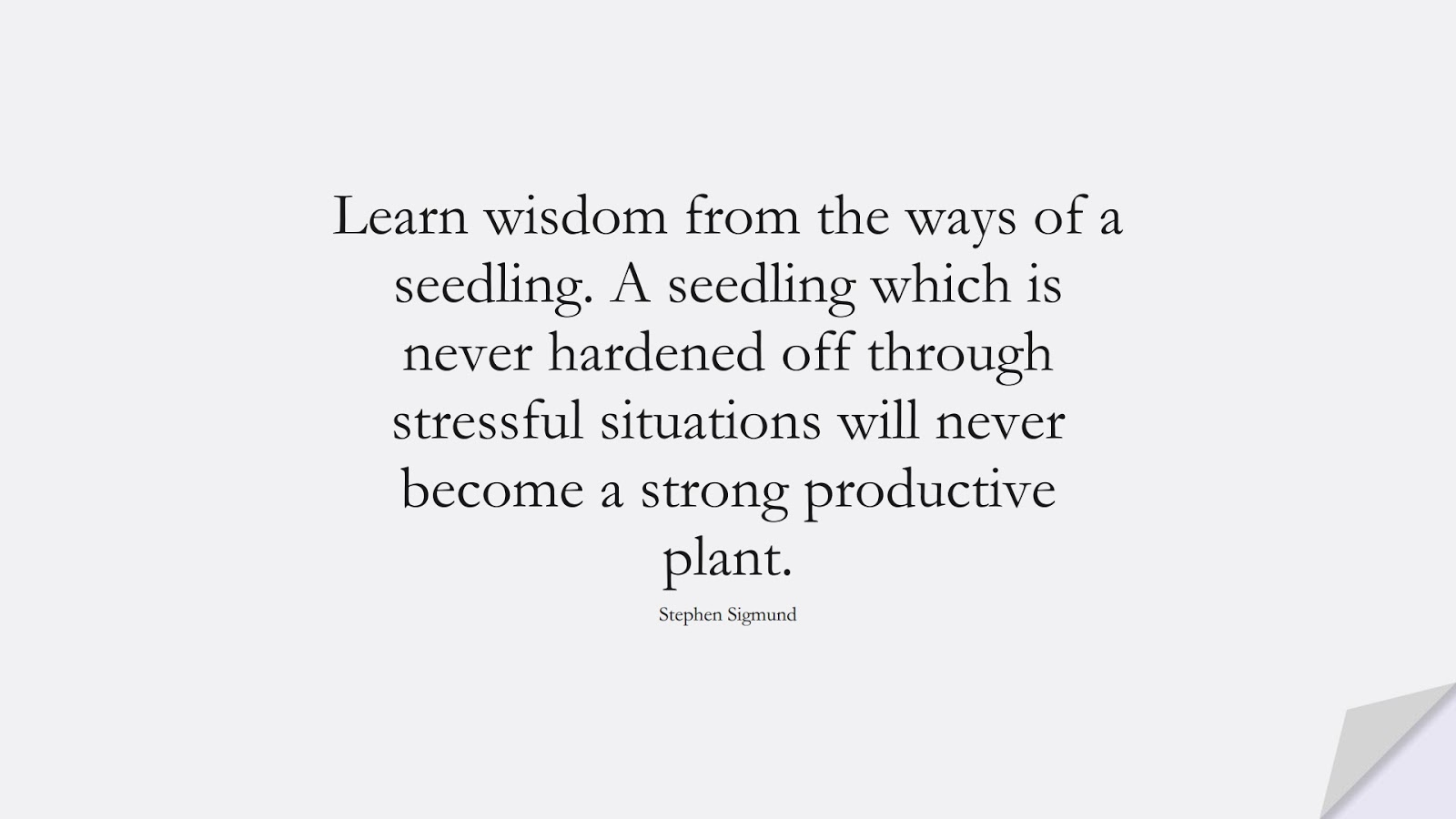 Learn wisdom from the ways of a seedling. A seedling which is never hardened off through stressful situations will never become a strong productive plant. (Stephen Sigmund);  #ChangeQuotes