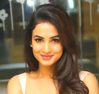Sonal Chauhan Biography Profile Wiki Weight Height Biodata Body Measurements Affairs Family Photos and More...