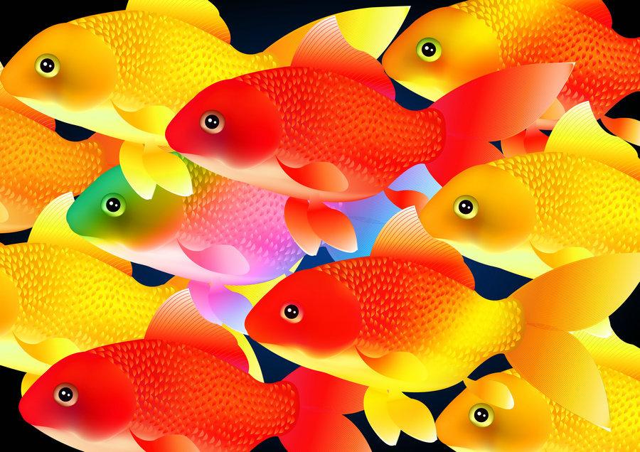 Para el Feng Shui los peces no tienen ninguna relevancia