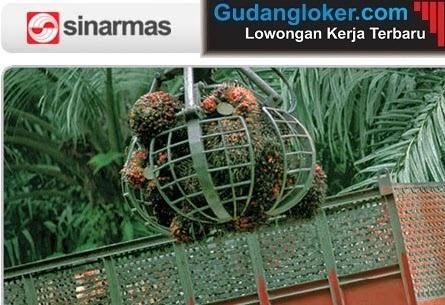 Lowongan Kerja PT Sinarmas Pulp and Paper Products