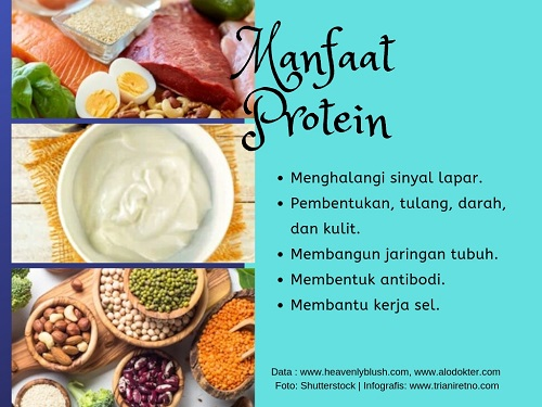 greek-yogurt-tinggi-protein