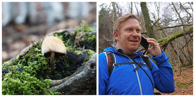 Ravensdale forest mushroom and finding a phone- C.Gault 2019