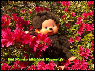 kiki virkiki vintage authentique yeux bleus monchhichi jardin foret tortue fleurs cerisiers