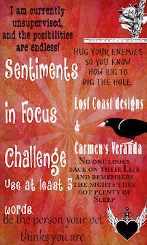 Sentiments in focus Challenge