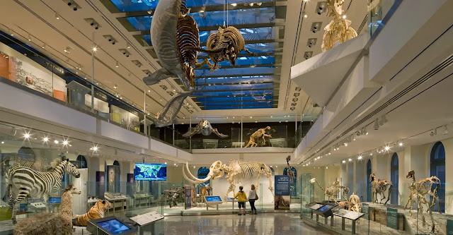 the Natural History Museum of Los Angeles