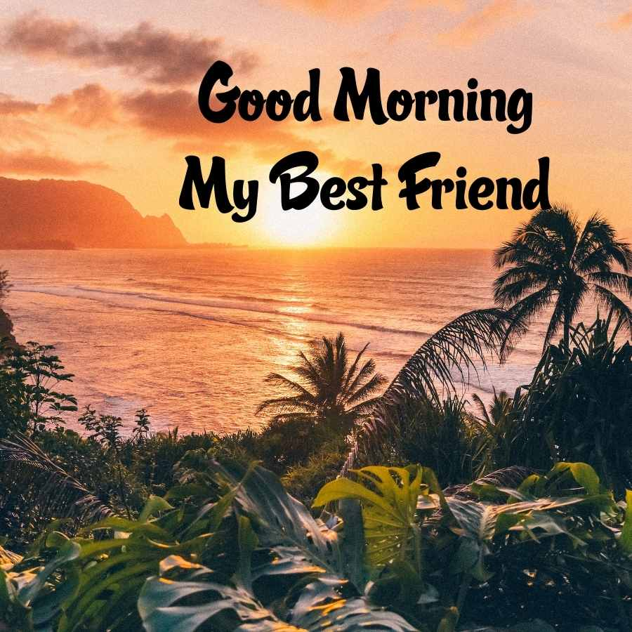 gud mrng msg for friends
