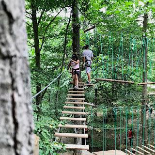 parcour en bois suspendu dans les arbres