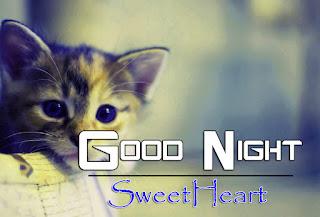 Latest Beautiful Good Night Wallpaper Free Download %2B6