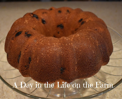 Cranberry and Rosewater Bundt