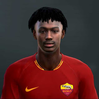 PES 2013 William Bianda Face and Hair by TM Facemaker