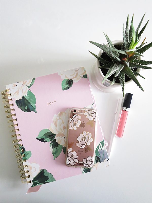 Bando 17-month 2017 large agenda in pink floral Lady of Leisure pattern