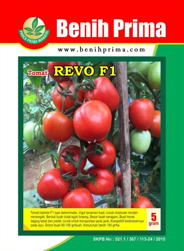 benih tomat, benih tomat unggul, benih tomat lebat, benih tomat hibrida, benih tomat prima mandiri, benih prima mandiri,