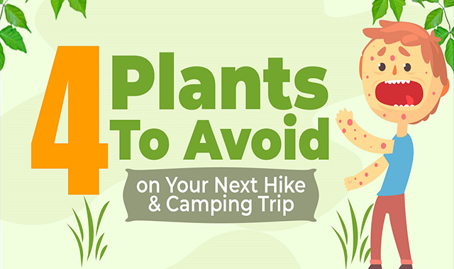4 Plants to Avoid on Your Next Hike & Camping Trip