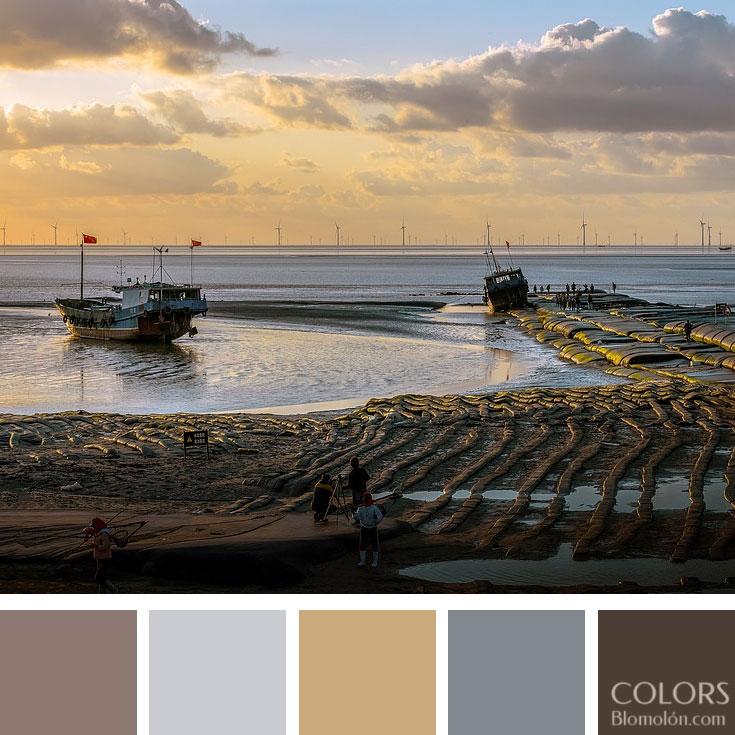 variedad_en_color_paletas_de_colores_95