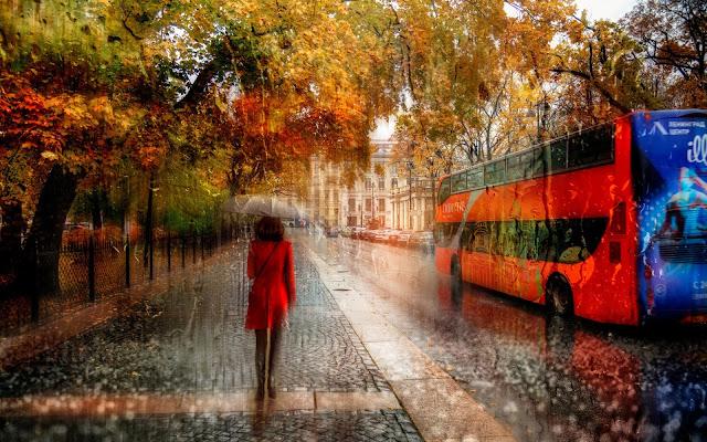 Осенняя хандра: стремительное падение настроения