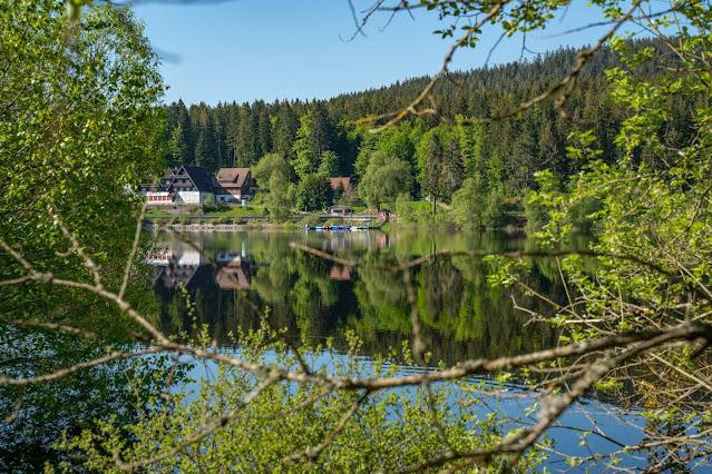 Premiumwanderweg Murgleiter | Etappe 3 von Forbach nach Schönmünzach | Wandern nördlicher Schwarzwald 10