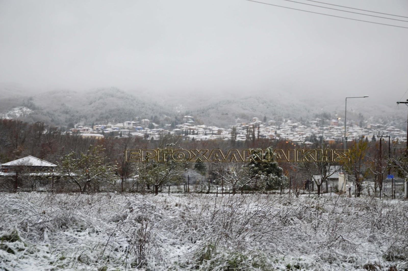 Τώρα που 'επεσε και το πρώτο χιόνι θα δοθούν και τα καυσόξυλα!!!