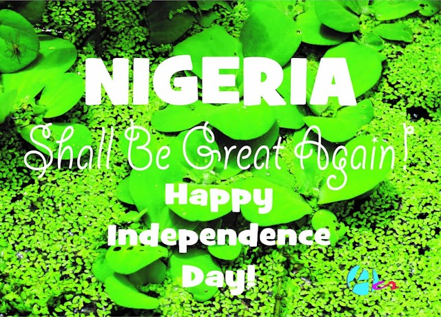 BREAKING:THE BEST WRITE UP OF NIGERIA AT 59 BY AN ANONYMOUS WRITER