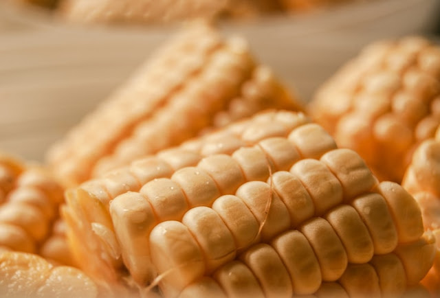 Top10 largest Agriculture Producing India Maize
