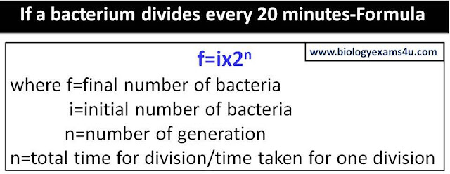 If a bacterium divides every 20 minutes-Formula Equation