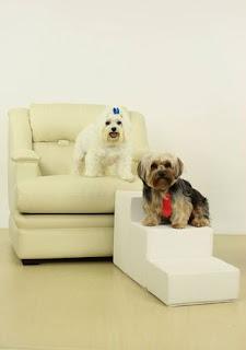 escadas para cães subir em sofás