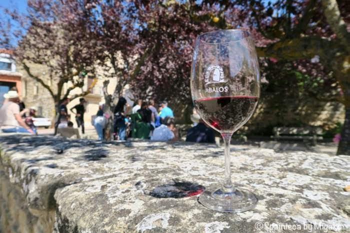 青空の下で開催されたスペインワインの産地リオハのワイン祭と赤ワイン