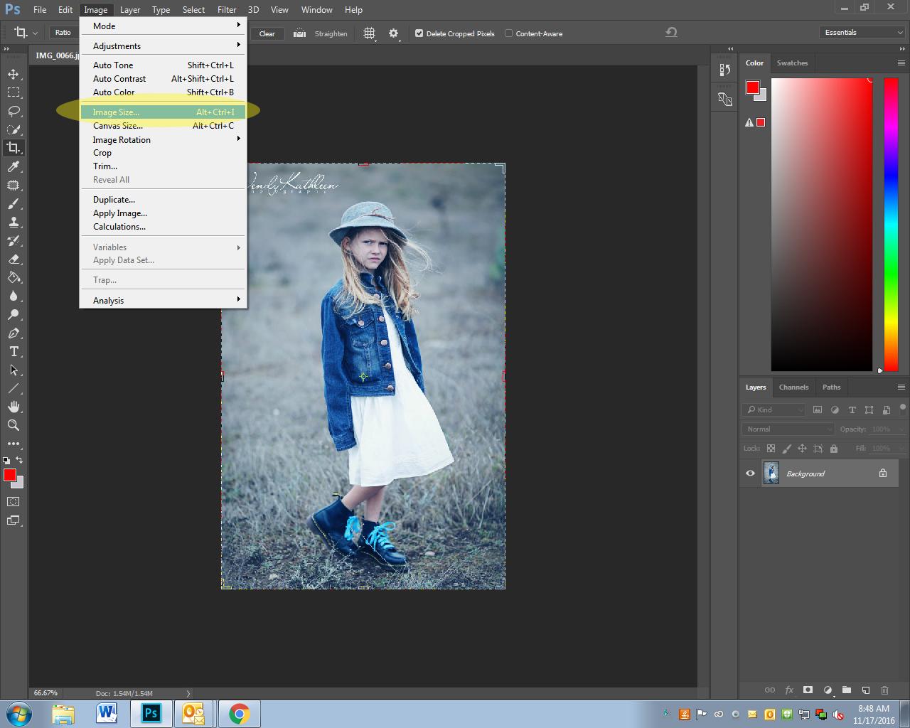 White Balance Assignment - CVHS Photography