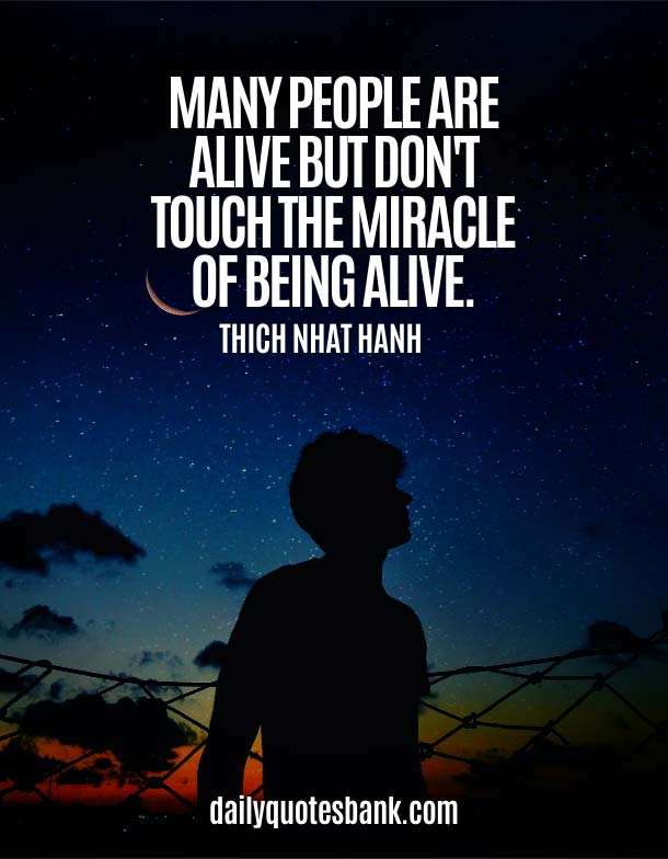 Positive Quotes About Miracle Of Life