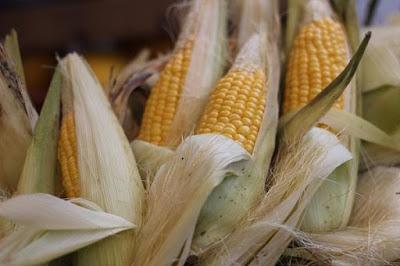 ragam khasiat rambut jagung
